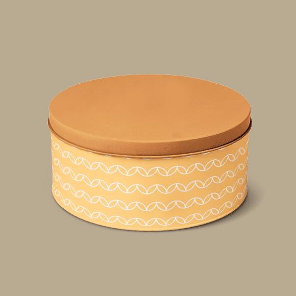 Tiffin Box with Geometric Circles