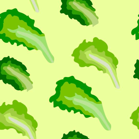 Lettuce Vegetable Pattern
