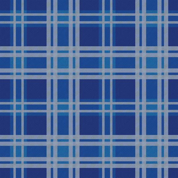 Tartan seamless vector pattern. White checks on blue background