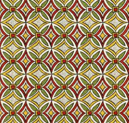 Indian Ethnic Pattern