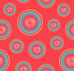 Ethnic Ornaments Pattern