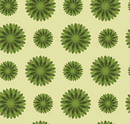 Scandi Flower Patterns