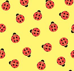 Ladybug Pattern