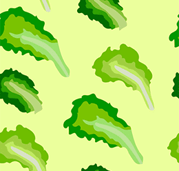 Lettuce Vector Pattern