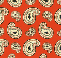 Paisley Oriental Pattern