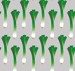 Spring Onion Pattern