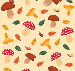 Autumn & Mushroom Pattern